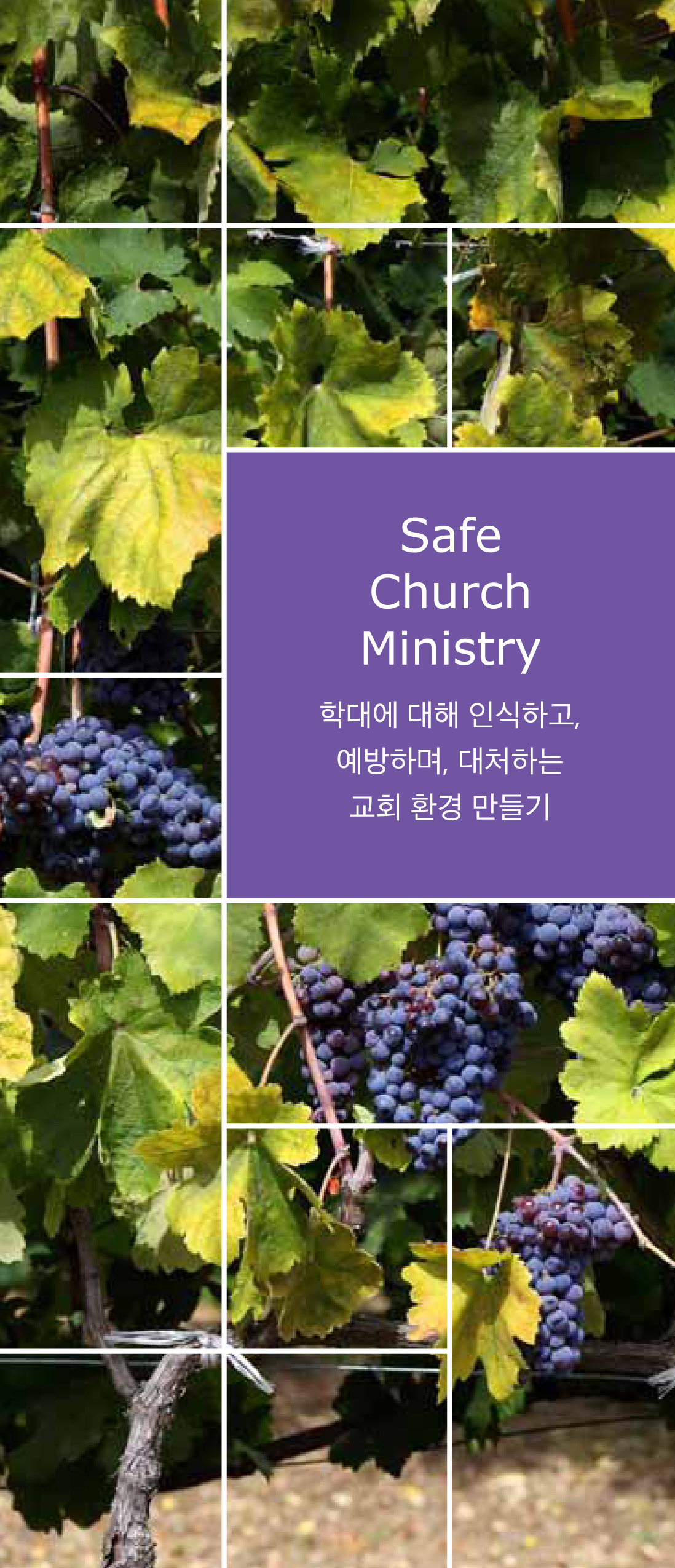 Safe Church Ministry Brochure (Korean)